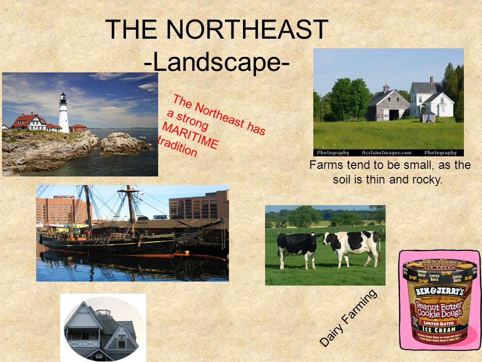 THE NORTHEAST -Landscape- Farms tend to be small, as the soil is thin and rocky.