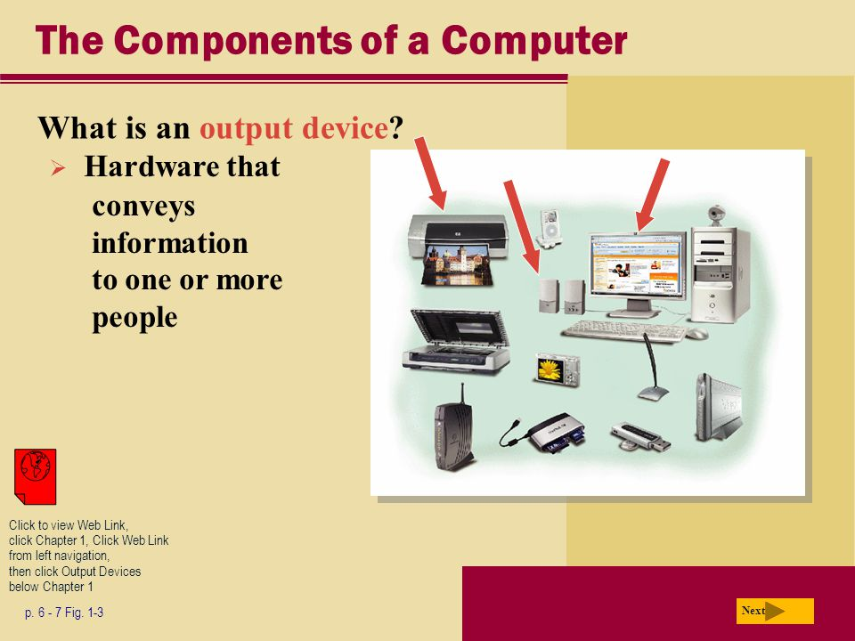 The Components of a Computer What is an output device.