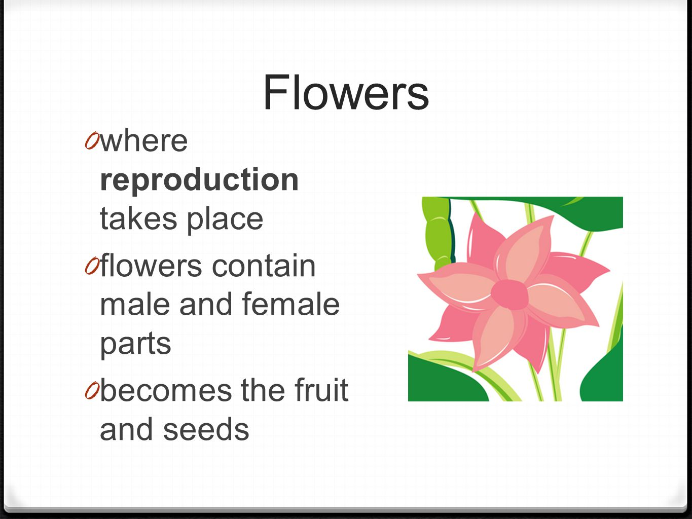 Flowers 0 where reproduction takes place 0 flowers contain male and female parts 0 becomes the fruit and seeds