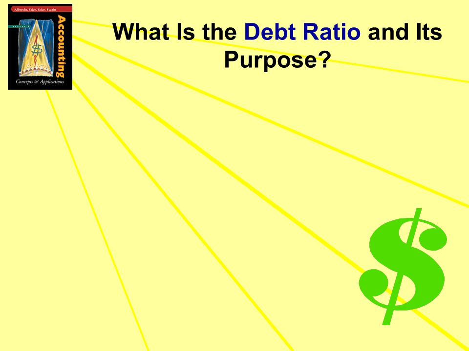What Is the Debt Ratio and Its Purpose