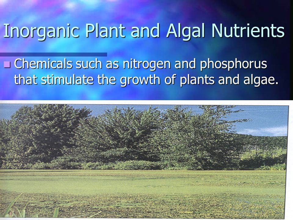 Chemicals such as nitrogen and phosphorus that stimulate the growth of plants and algae.