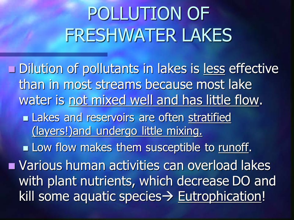 POLLUTION OF FRESHWATER LAKES Dilution of pollutants in lakes is less effective than in most streams because most lake water is not mixed well and has little flow.