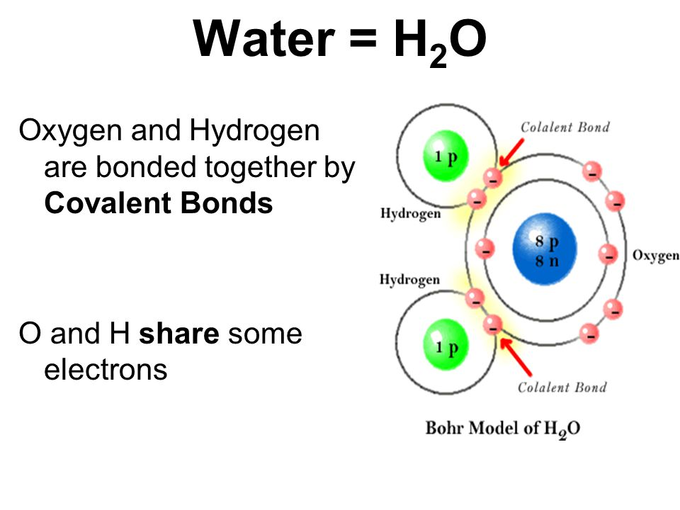 Water = H 2 O Oxygen and Hydrogen are bonded together by Covalent Bonds O and H share some electrons