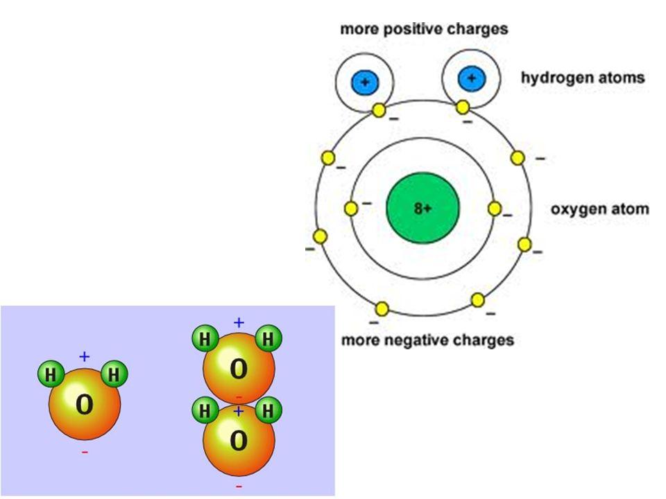 Hydrogen Bonds  Chemistry  Socratic