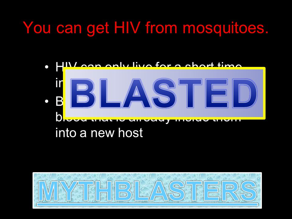 You can get HIV from mosquitoes.