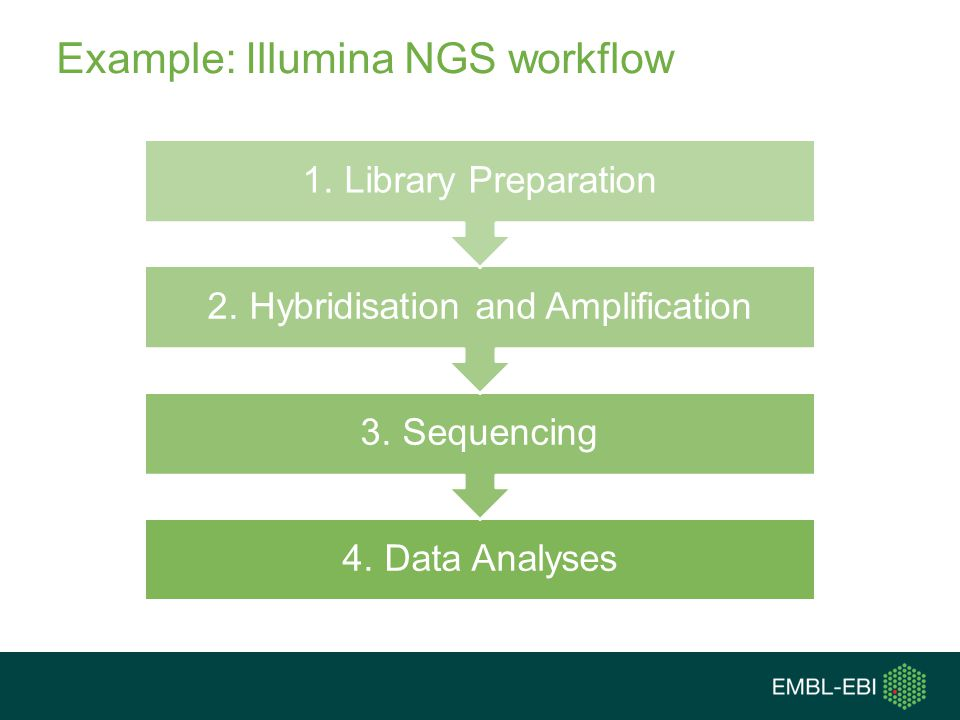 Example: Illumina NGS workflow 4. Data Analyses 3.