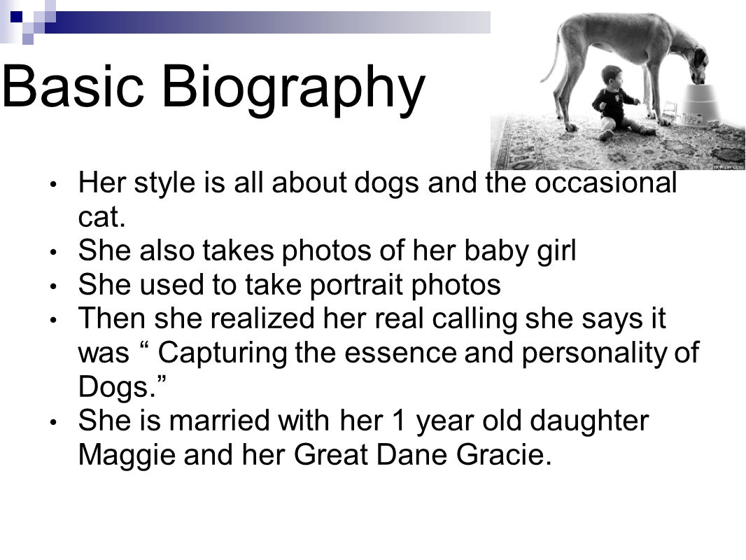 Basic Biography Her style is all about dogs and the occasional cat.