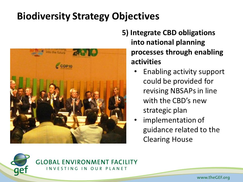 5) Integrate CBD obligations into national planning processes through enabling activities Enabling activity support could be provided for revising NBSAPs in line with the CBD's new strategic plan implementation of guidance related to the Clearing House Biodiversity Strategy Objectives