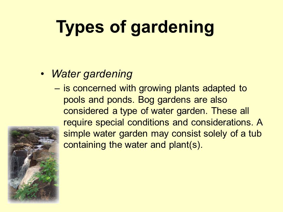 Types of gardening Water gardening –is concerned with growing plants adapted to pools and ponds.