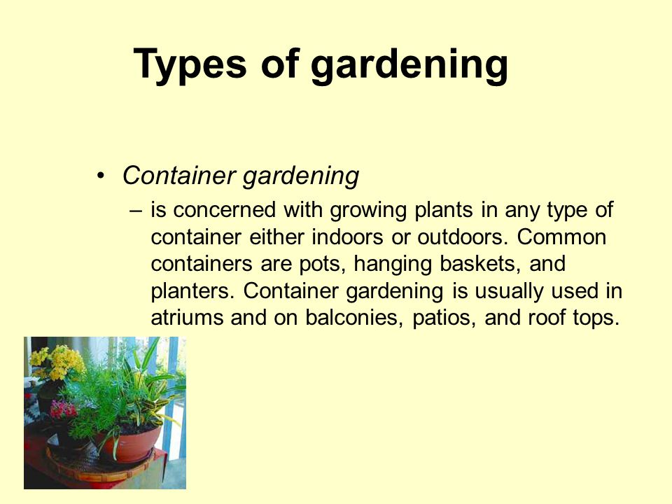 Types of gardening Container gardening –is concerned with growing plants in any type of container either indoors or outdoors.
