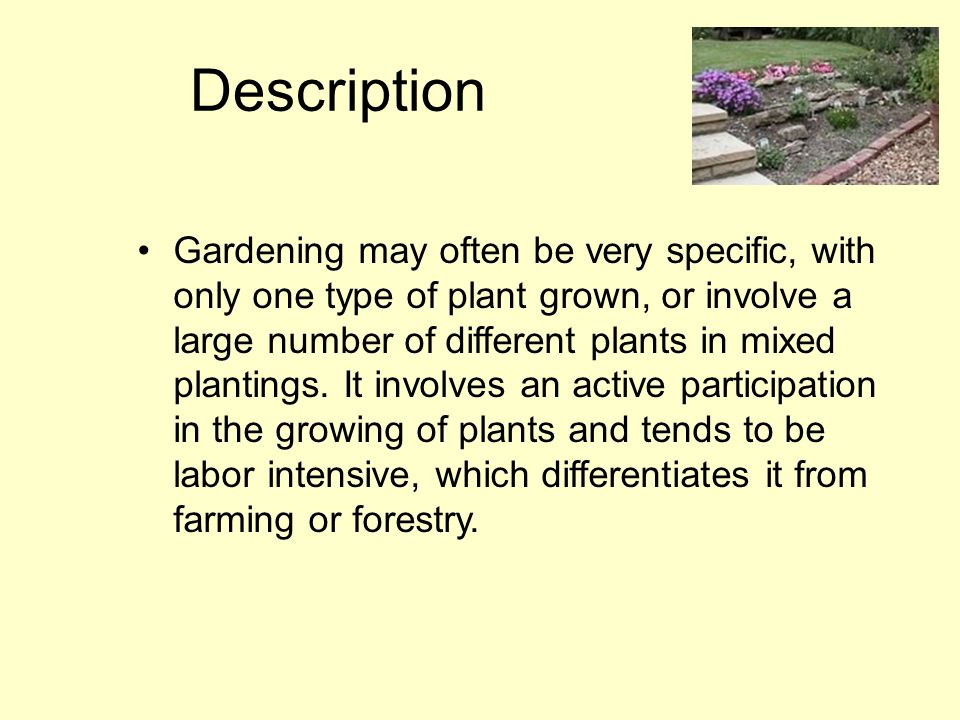 Description Gardening may often be very specific, with only one type of plant grown, or involve a large number of different plants in mixed plantings.