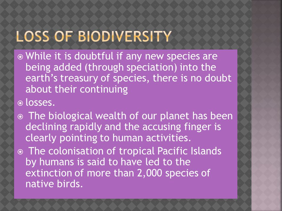  While it is doubtful if any new species are being added (through speciation) into the earth's treasury of species, there is no doubt about their continuing  losses.
