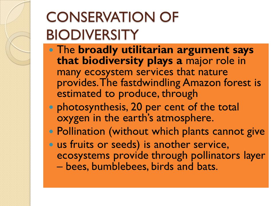 CONSERVATION OF BIODIVERSITY The broadly utilitarian argument says that biodiversity plays a major role in many ecosystem services that nature provides.