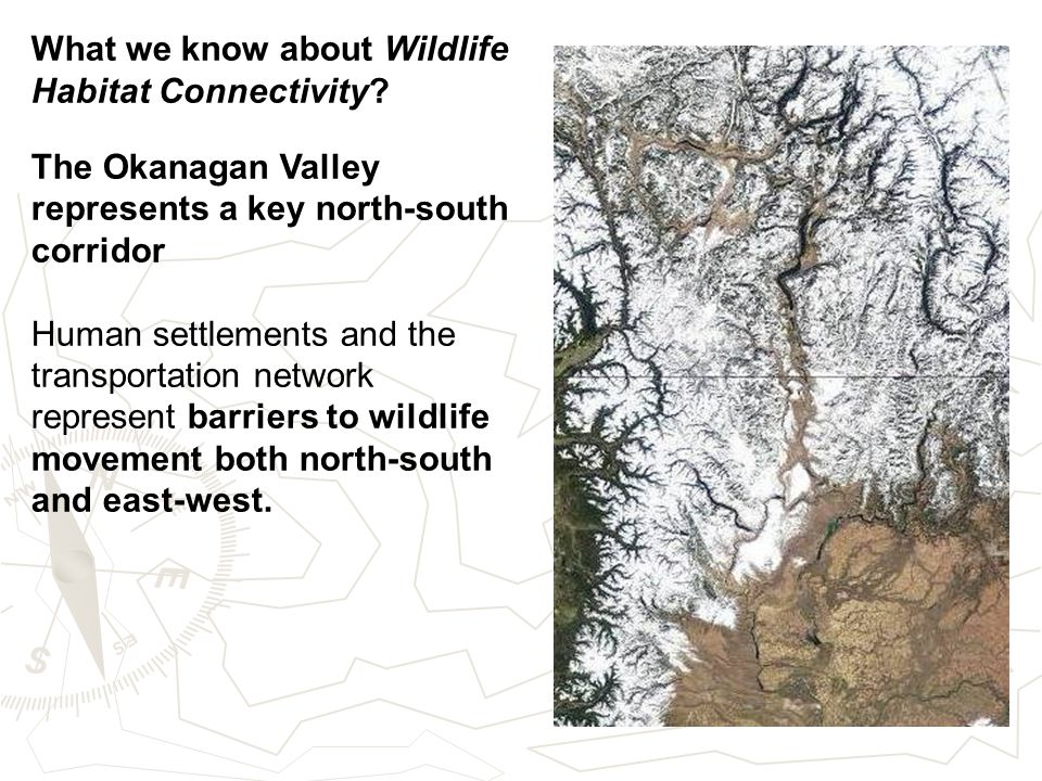What we know about Wildlife Habitat Connectivity.