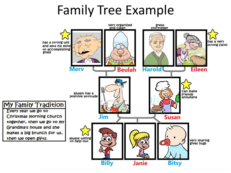 My Family Tree Ch. 11. Family Tree Directions 1.Draw A Picture Of