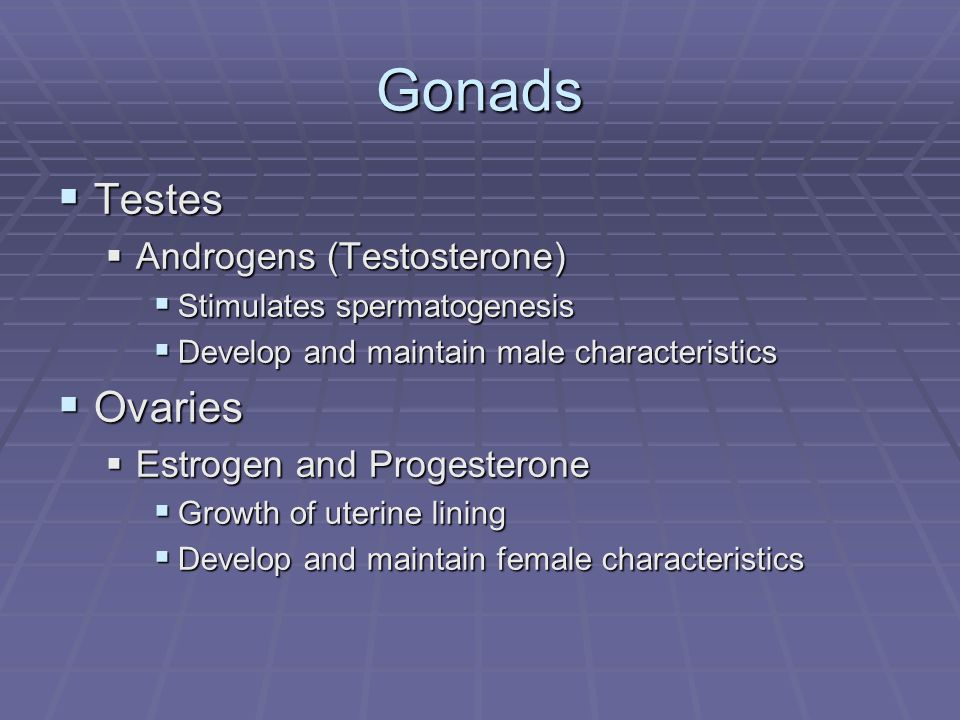 Gonads  Testes  Androgens (Testosterone)  Stimulates spermatogenesis  Develop and maintain male characteristics  Ovaries  Estrogen and Progesterone  Growth of uterine lining  Develop and maintain female characteristics
