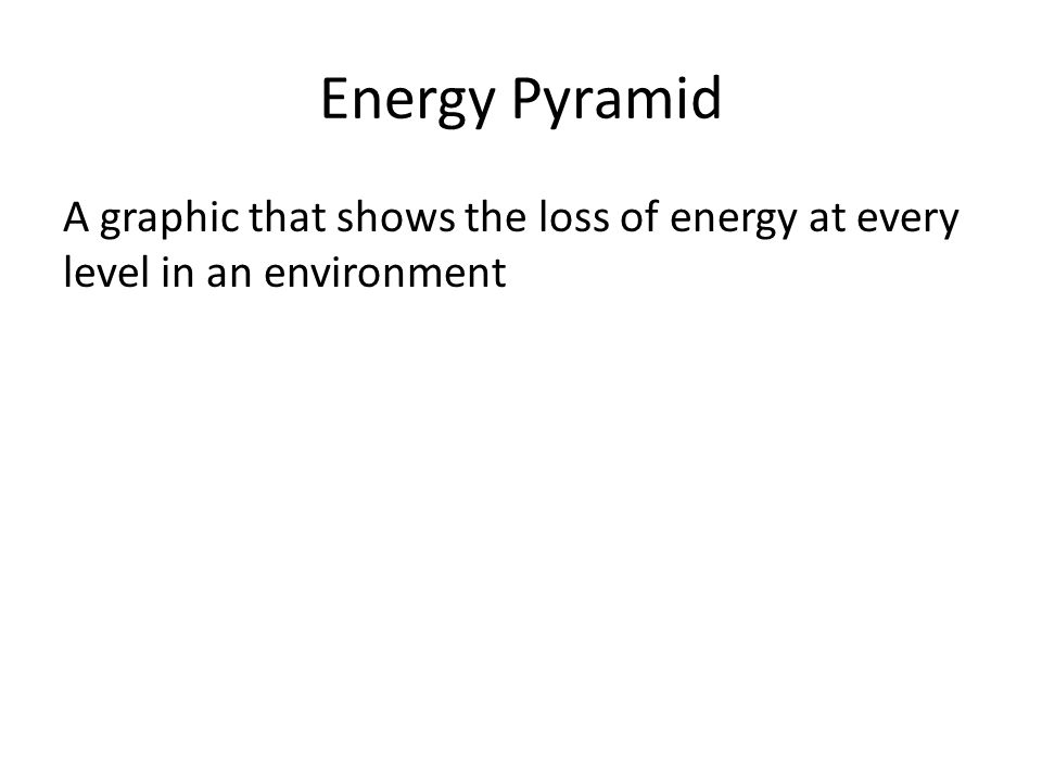 Energy Pyramid A graphic that shows the loss of energy at every level in an environment