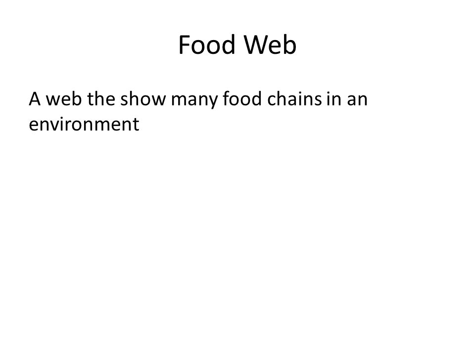 Food Web A web the show many food chains in an environment