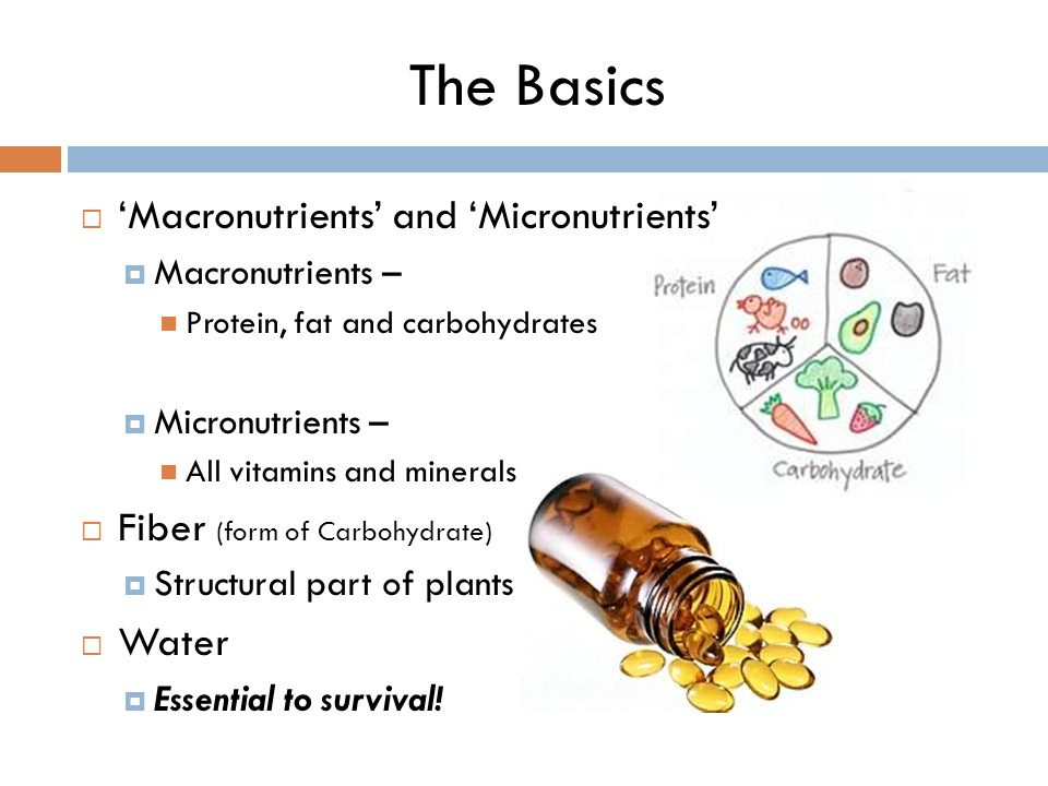 macronutrients and micronutrients
