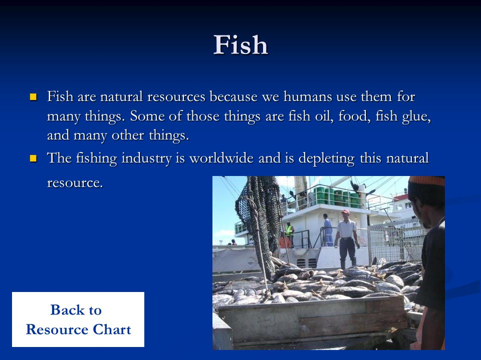 Fish Fish are natural resources because we humans use them for many things.