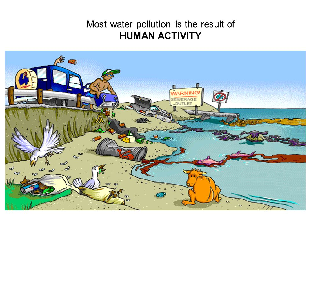 Most water pollution is the result of HUMAN ACTIVITY