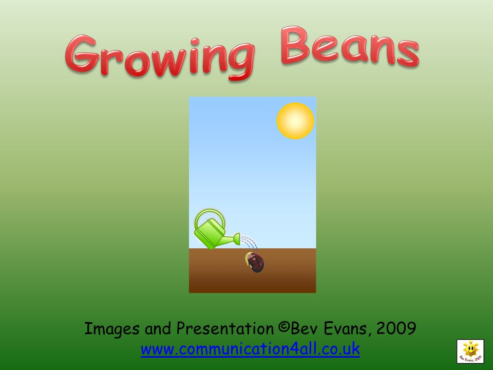 Images and Presentation ©Bev Evans,