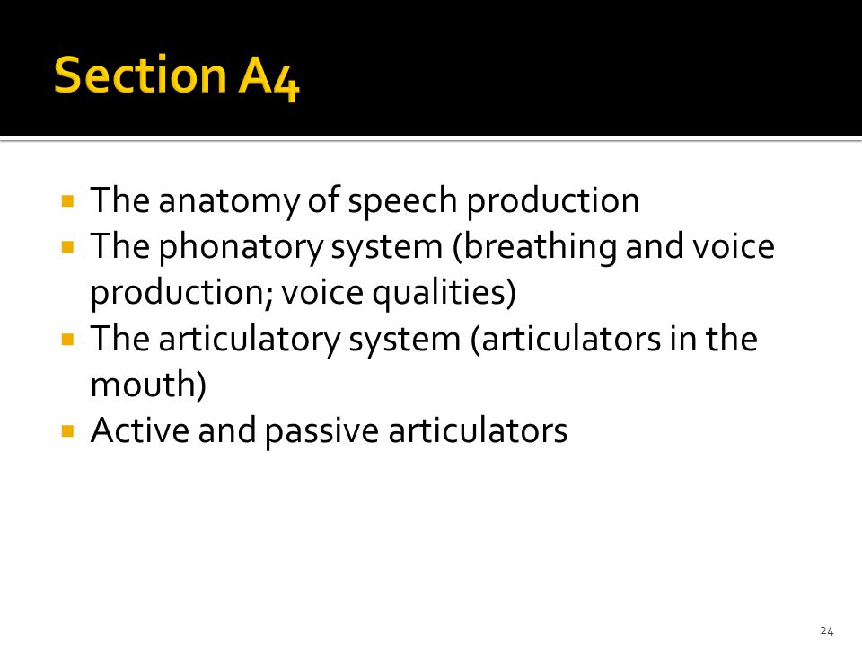 Breathing for Voice Production