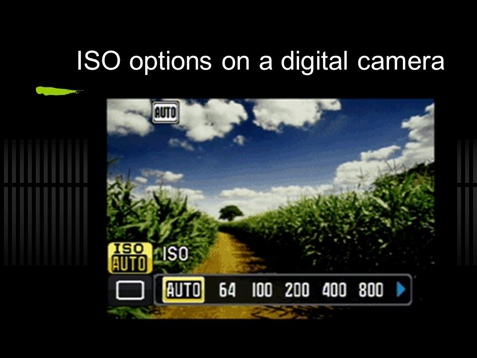 ISO options on a digital camera