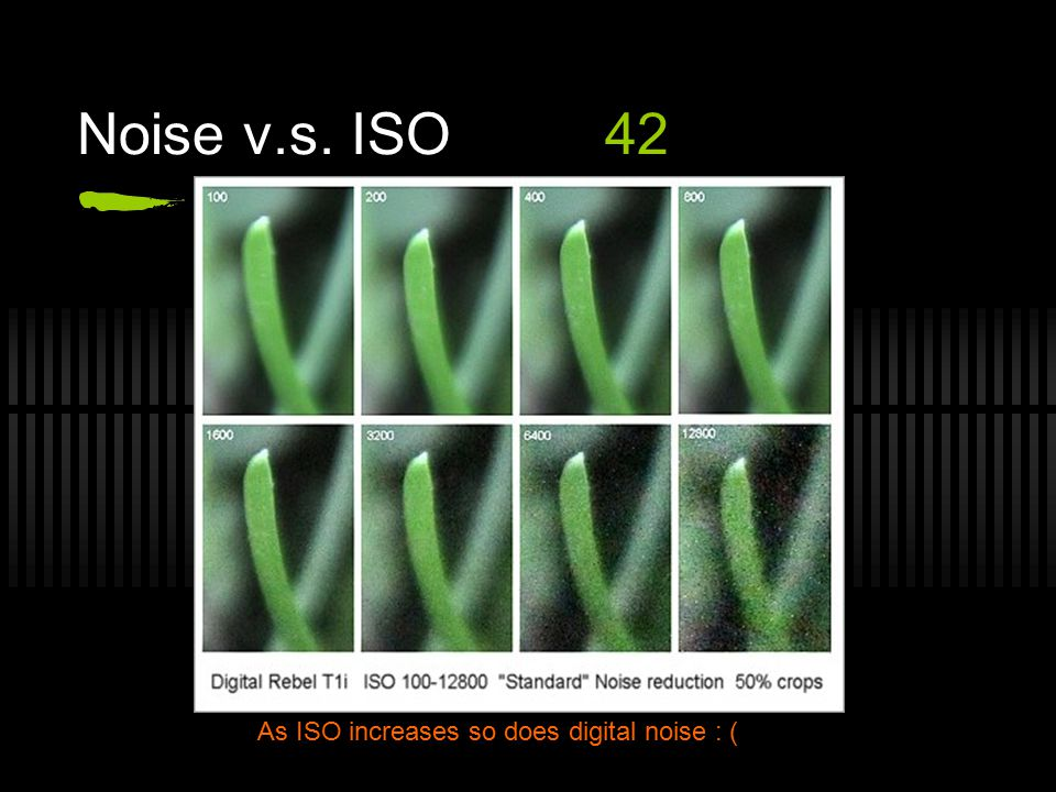 Noise v.s. ISO42 As ISO increases so does digital noise : (