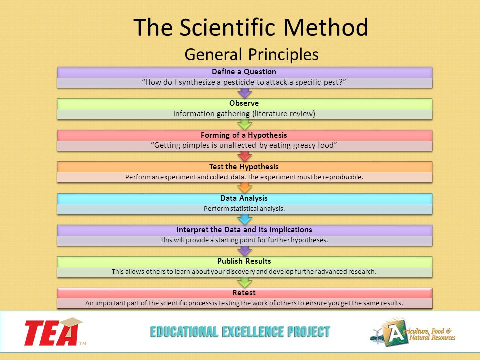 What are the basic principles of the scientific method?