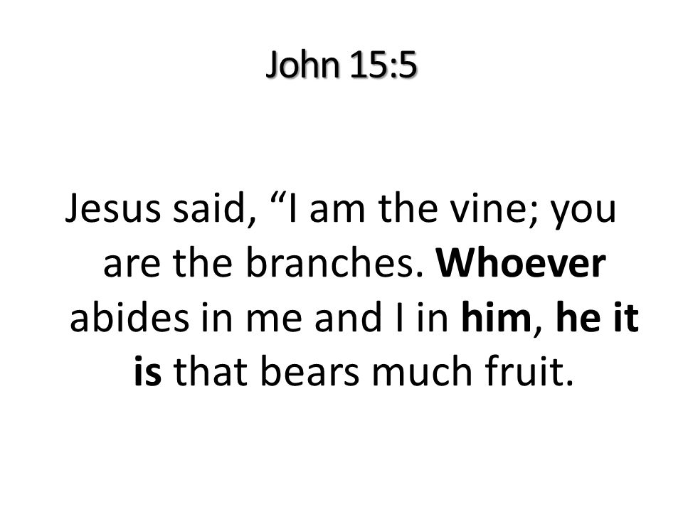 John 15:5 Jesus said, I am the vine; you are the branches.