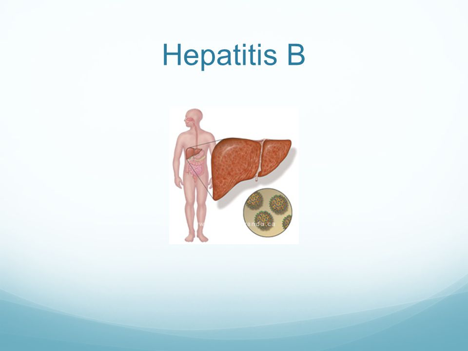 Hep B What is it.The word hepatitis means inflammation of the liver .