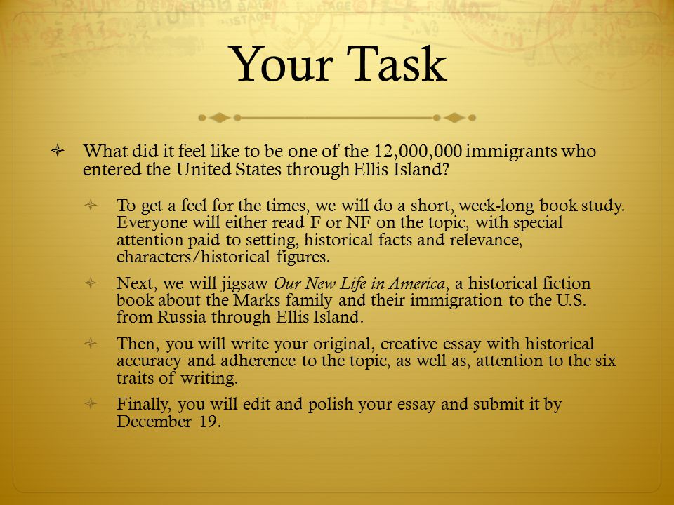 immigration in america today essay