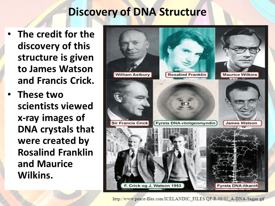 Discovery of DNA Structure The credit for the discovery of this structure is given to James Watson and Francis Crick.