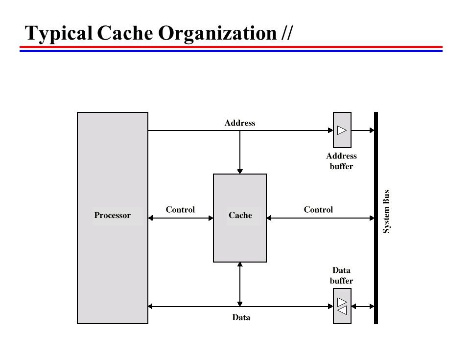 Typical Cache Organization //