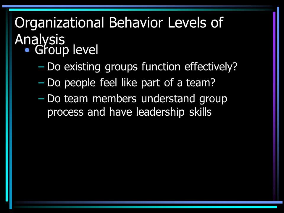 Organizational Behavior Levels of Analysis Organization Level –Does the organization have a structure to accomplish its goals.
