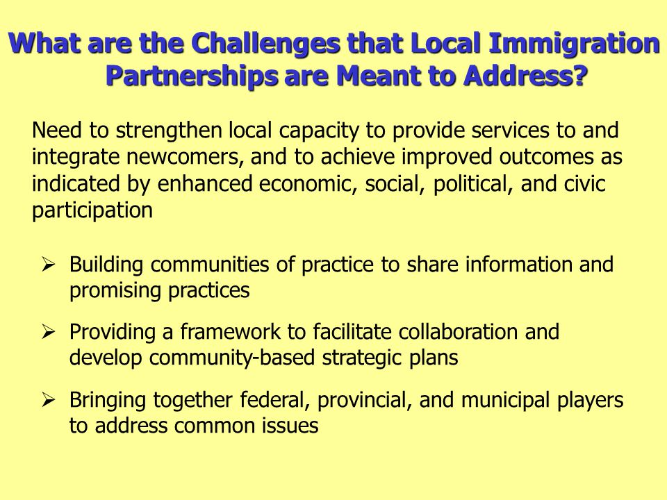 What are the Challenges that Local Immigration Partnerships are Meant to Address.
