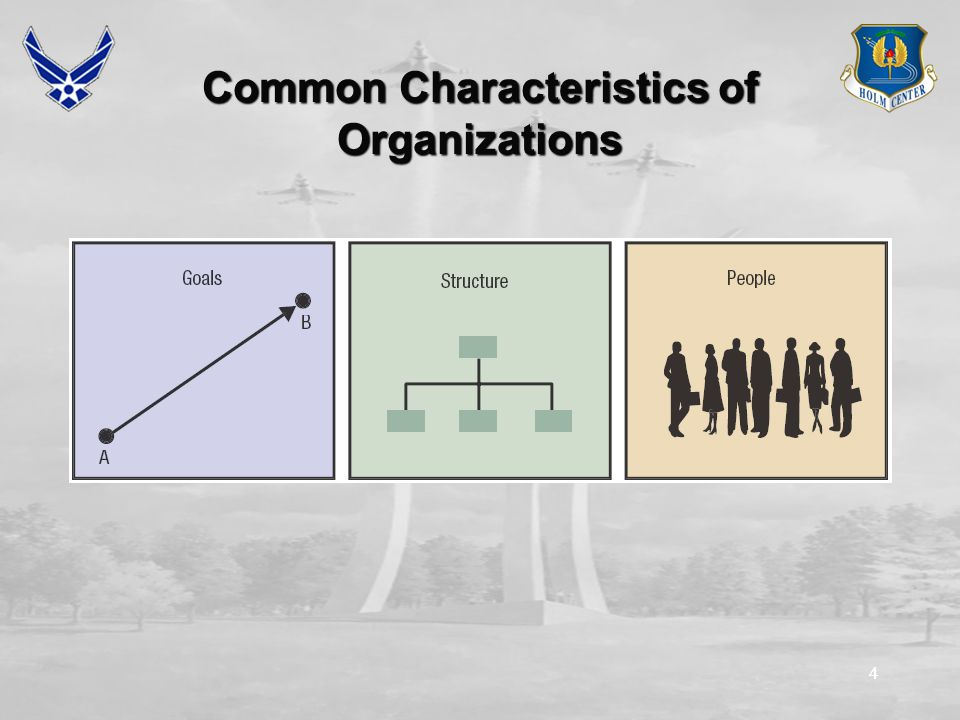44 Common Characteristics of Organizations