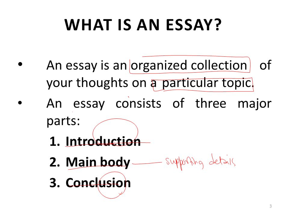 What is a comprehensive essay?