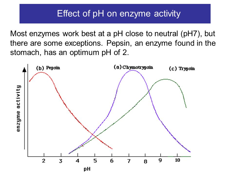 Movie Effect of pH on enzymes When the pH changes outwith optimal conditions, the shape of the active site of the enzyme alters and the enzyme is denatured.
