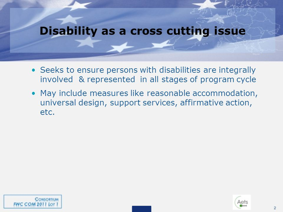 Disability as a cross cutting issue Seeks to ensure persons with disabilities are integrally involved & represented in all stages of program cycle May include measures like reasonable accommodation, universal design, support services, affirmative action, etc.