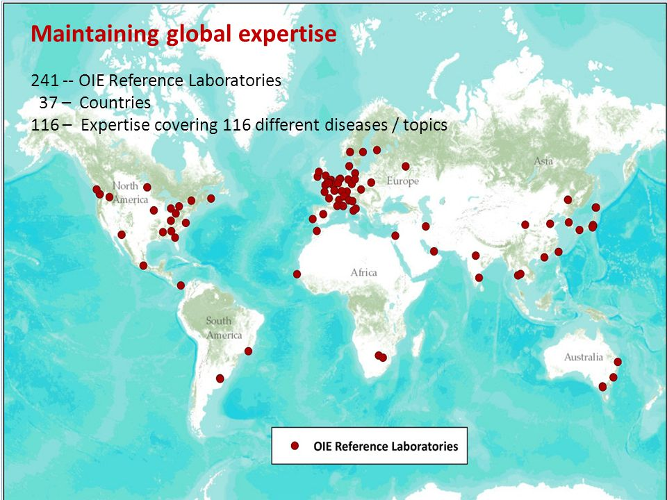 Maintaining global expertise OIE Reference Laboratories 37 – Countries 116 – Expertise covering 116 different diseases / topics