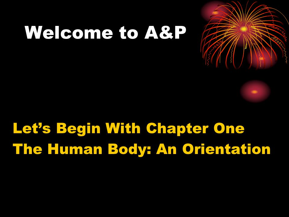 Welcome to A&P Let's Begin With Chapter One The Human Body: An Orientation
