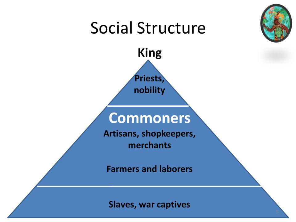 social structure of the society