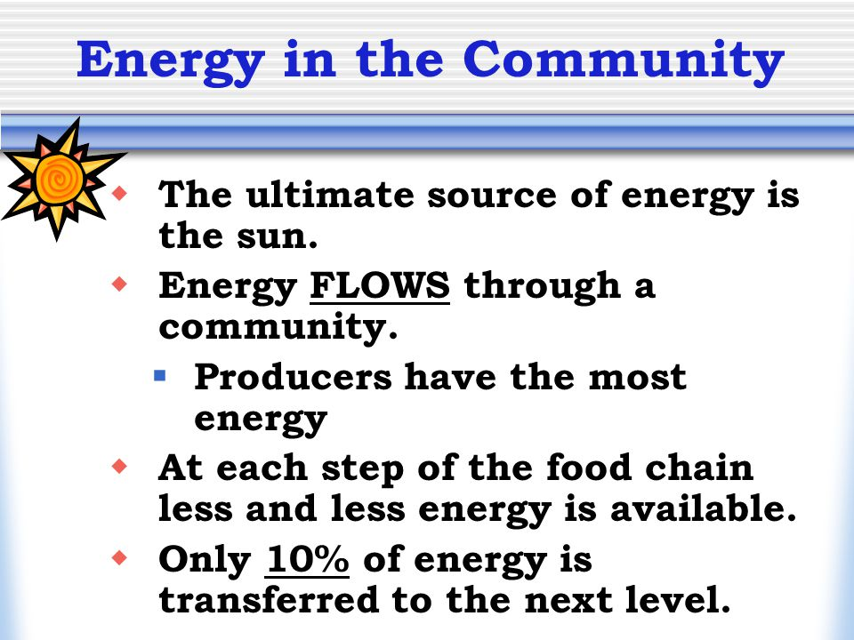 Energy in the Community  The ultimate source of energy is the sun.