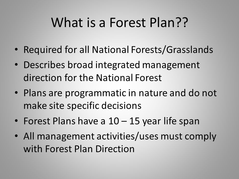 What is a Forest Plan .