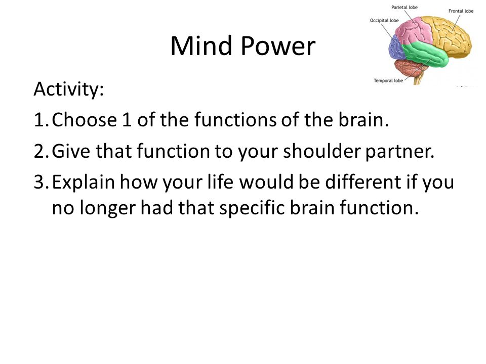 Mind Power Activity: 1.Choose 1 of the functions of the brain.