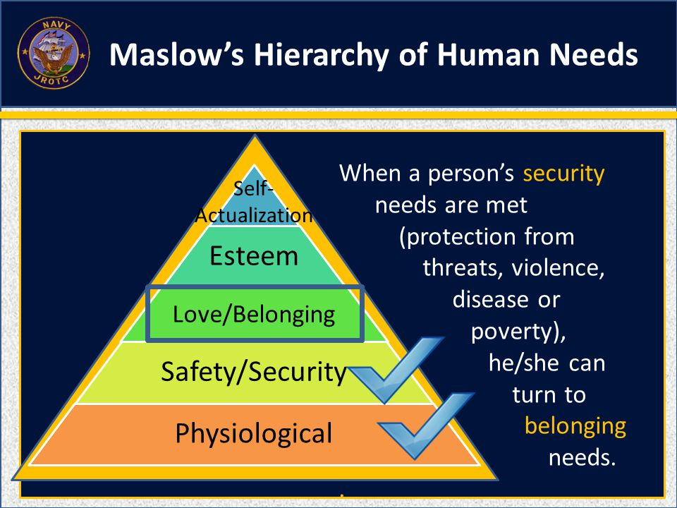 Esteem Love/Belonging Safety/Security Physiological Self- Actualization When a person's security needs are met (protection from threats, violence, disease or poverty), he/she can turn to belonging needs..