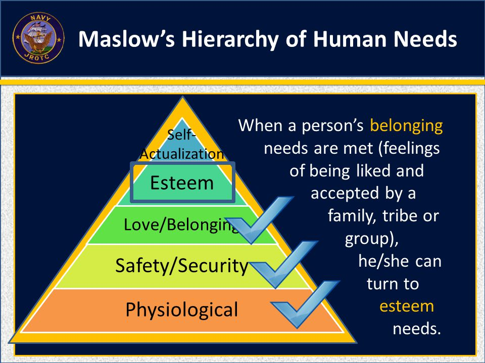 Esteem Love/Belonging Safety/Security Physiological Self- Actualization When a person's belonging needs are met (feelings of being liked and accepted by a family, tribe or group), he/she can turn to esteem needs.