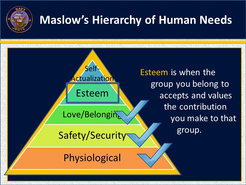 Esteem Love/Belonging Safety/Security Physiological Self- Actualization Maslow's Hierarchy of Human Needs Esteem is when the group you belong to accep